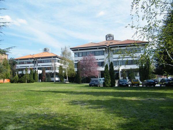 lola-institut-0123.jpg
