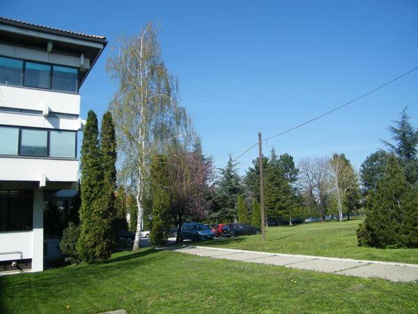 lola-institut-0104.jpg